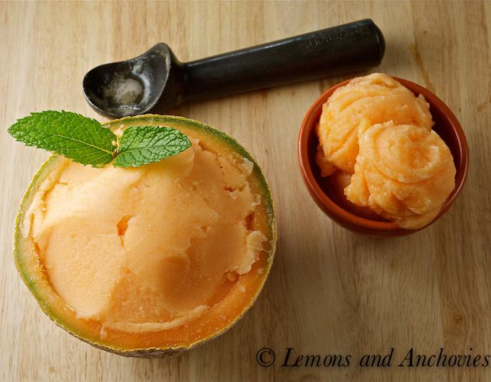 Cantaloupe Sorbet   Lemons and Anchovies
