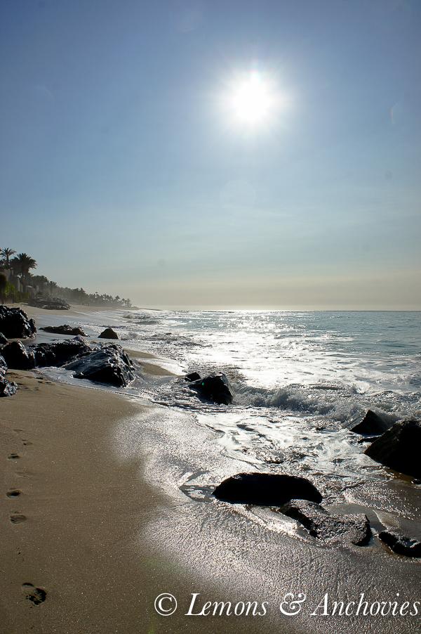San Jose del Cabo, Mexico | http://lemonsandanchovies.com
