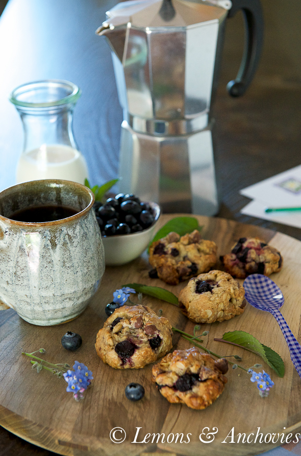 Blueberry Chocolate Oat Cookies